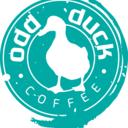 Odd Duck C.