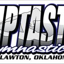 Small fliptastic logo