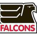 Small falcons logo