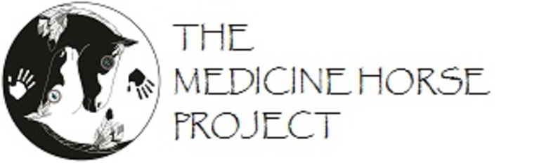 MEDICINE HORSE PROJECT