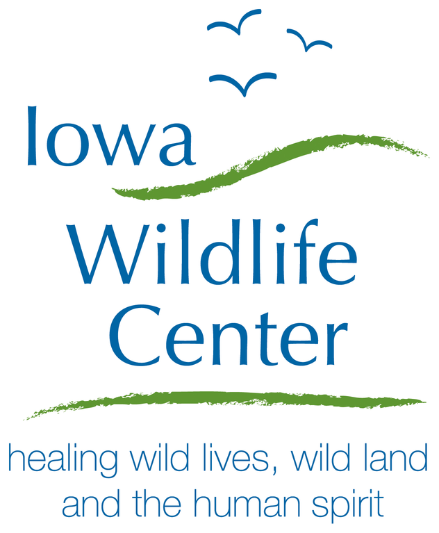 Iowa Wildlife Center