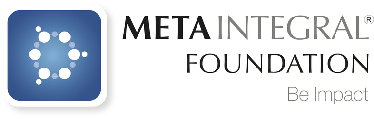 METAINTEGRAL FOUNDATION INC logo