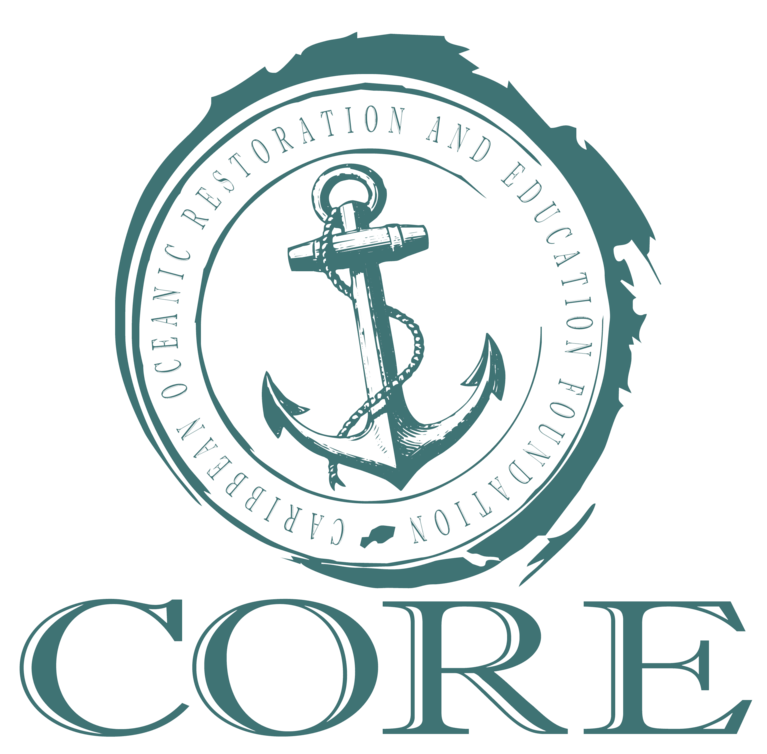 The CORE Foundation