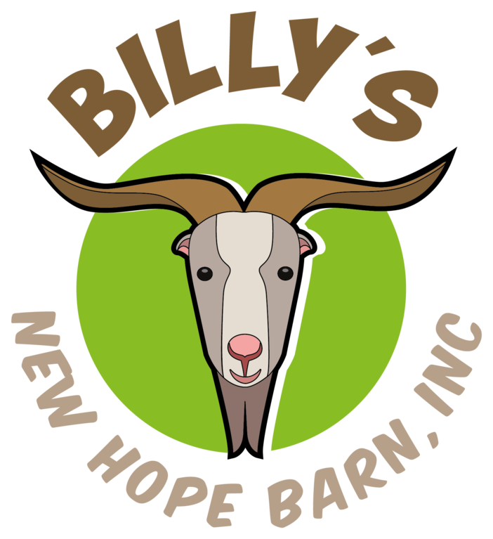 BILLYS NEW HOPE BARN INC logo