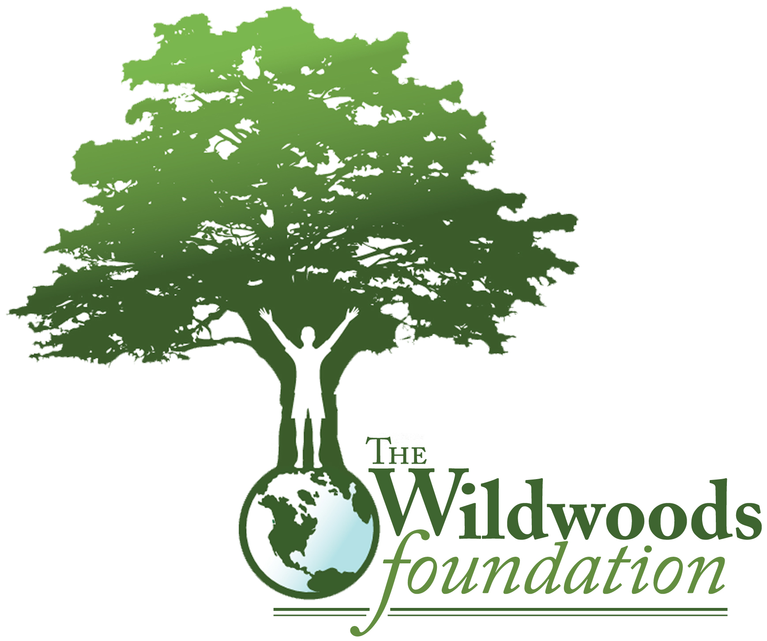 The Wildwoods Foundation