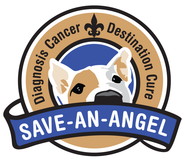 SAVE-AN-ANGEL LLC