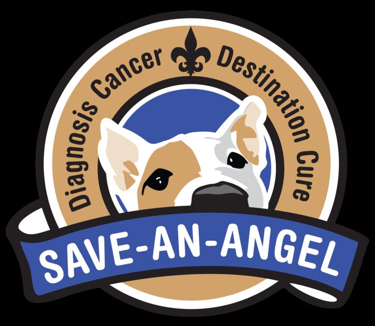 SAVE-AN-ANGEL LLC