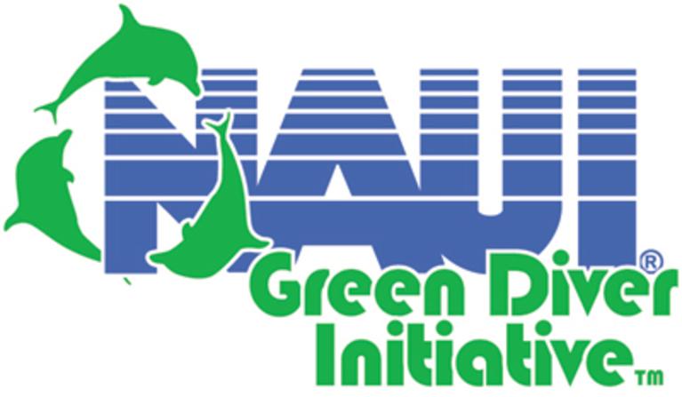 GREEN DIVER INITIATIVE INC