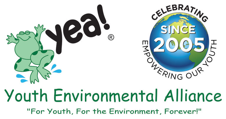YOUTH ENVIRONMENTAL ALLIANCE INC