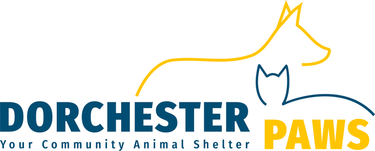 Dorchester Paws