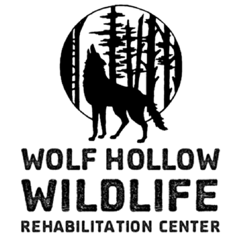 WOLF HOLLOW WILDLIFE REHABILITATION CENTRE logo