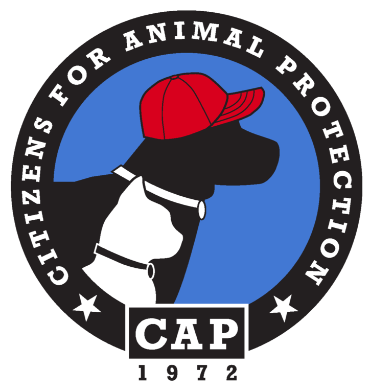 Citizens for Animal Protection Inc logo