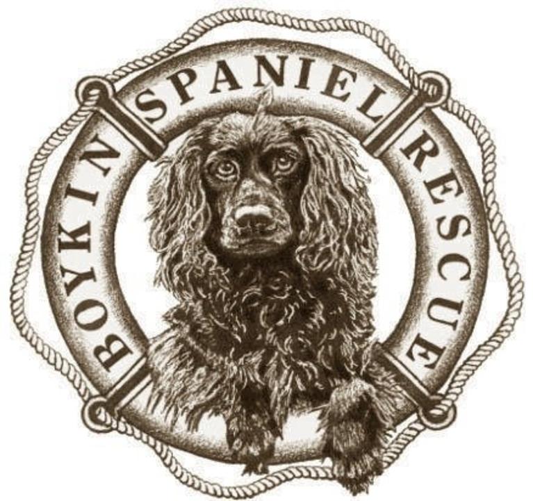 Boykin Spaniel Rescue logo