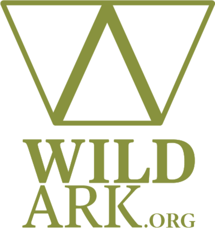 WILDARKORG INC