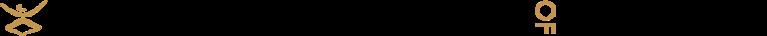 DANCE THEATRE OF HARLEM INC logo