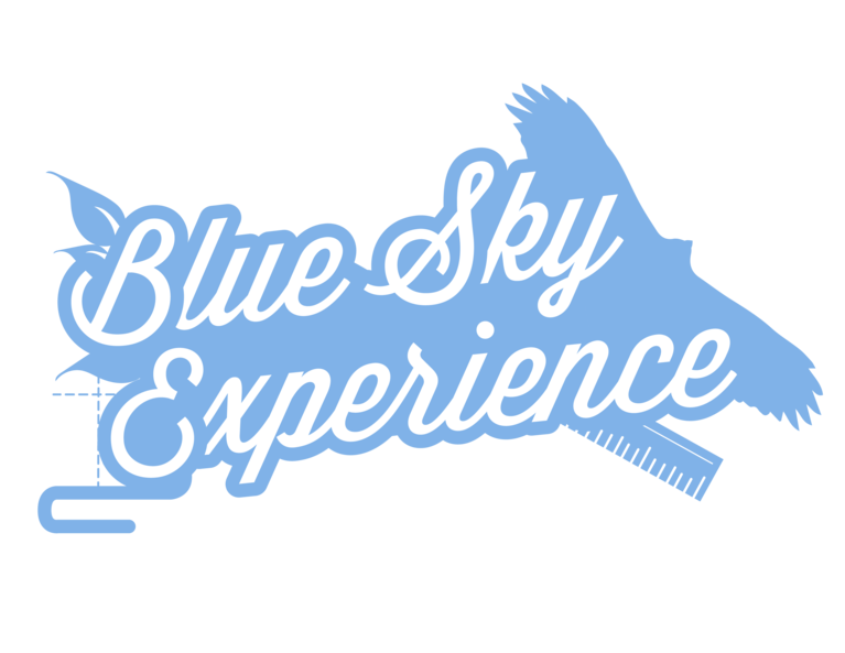 THE BLUE SKY EXPERIENCE AT FSK