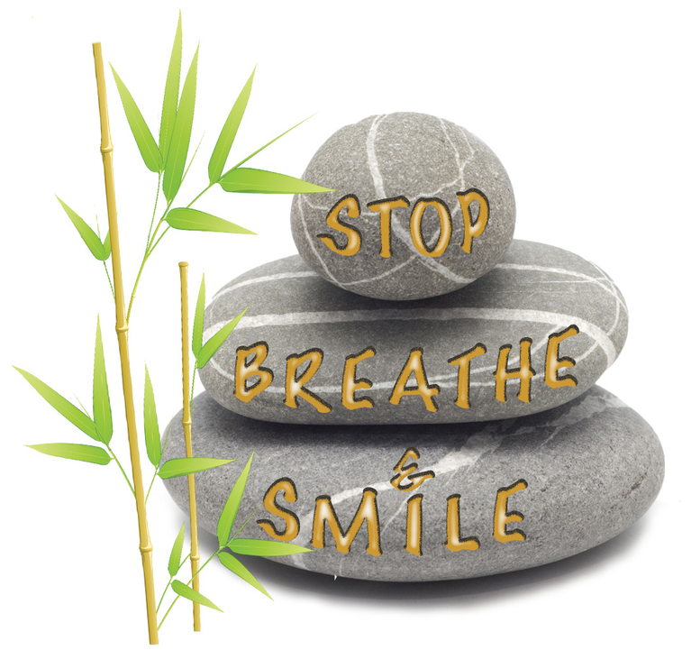 STOP BREATHE AND SMILE INC