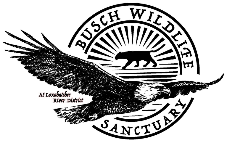 The Busch Wildlife Sanctuary Inc logo