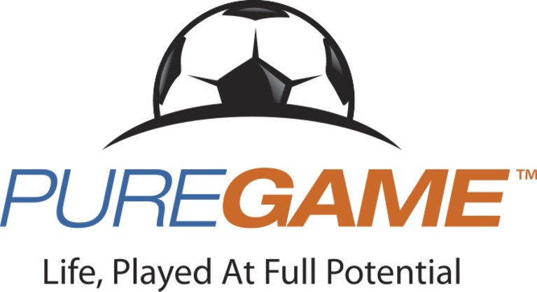 Pure Game logo