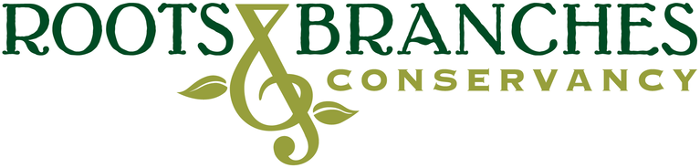 ROOTS & BRANCHES CONSERVANCY logo