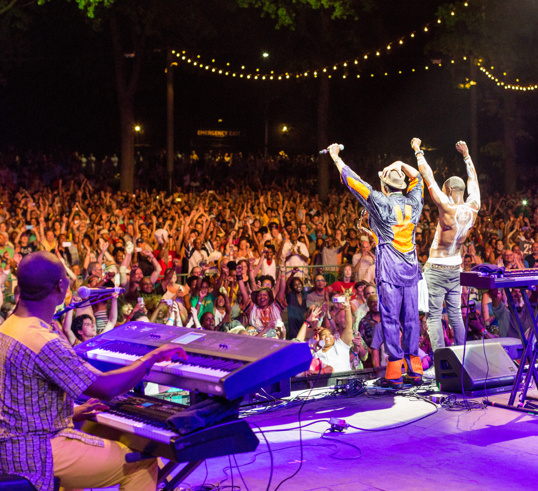 Become a Friend of the 2019 BRIC Celebrate Brooklyn! Festival image