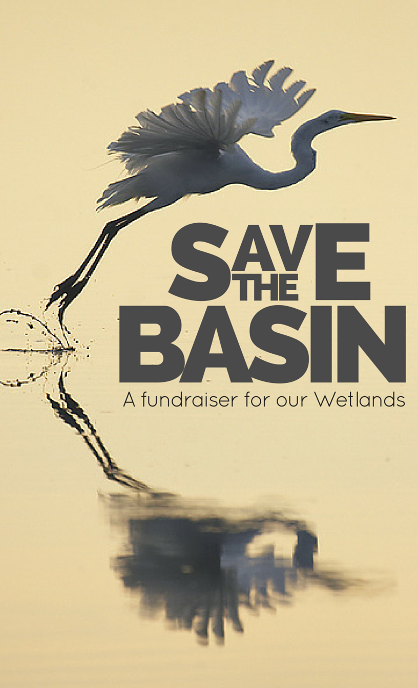 5th Annual Save the Basin Event image