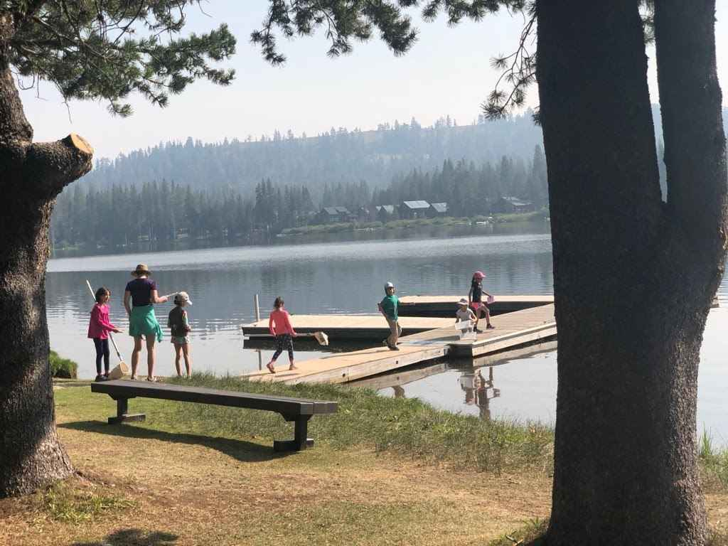 Serene Lakes Science Camp Session 2 image