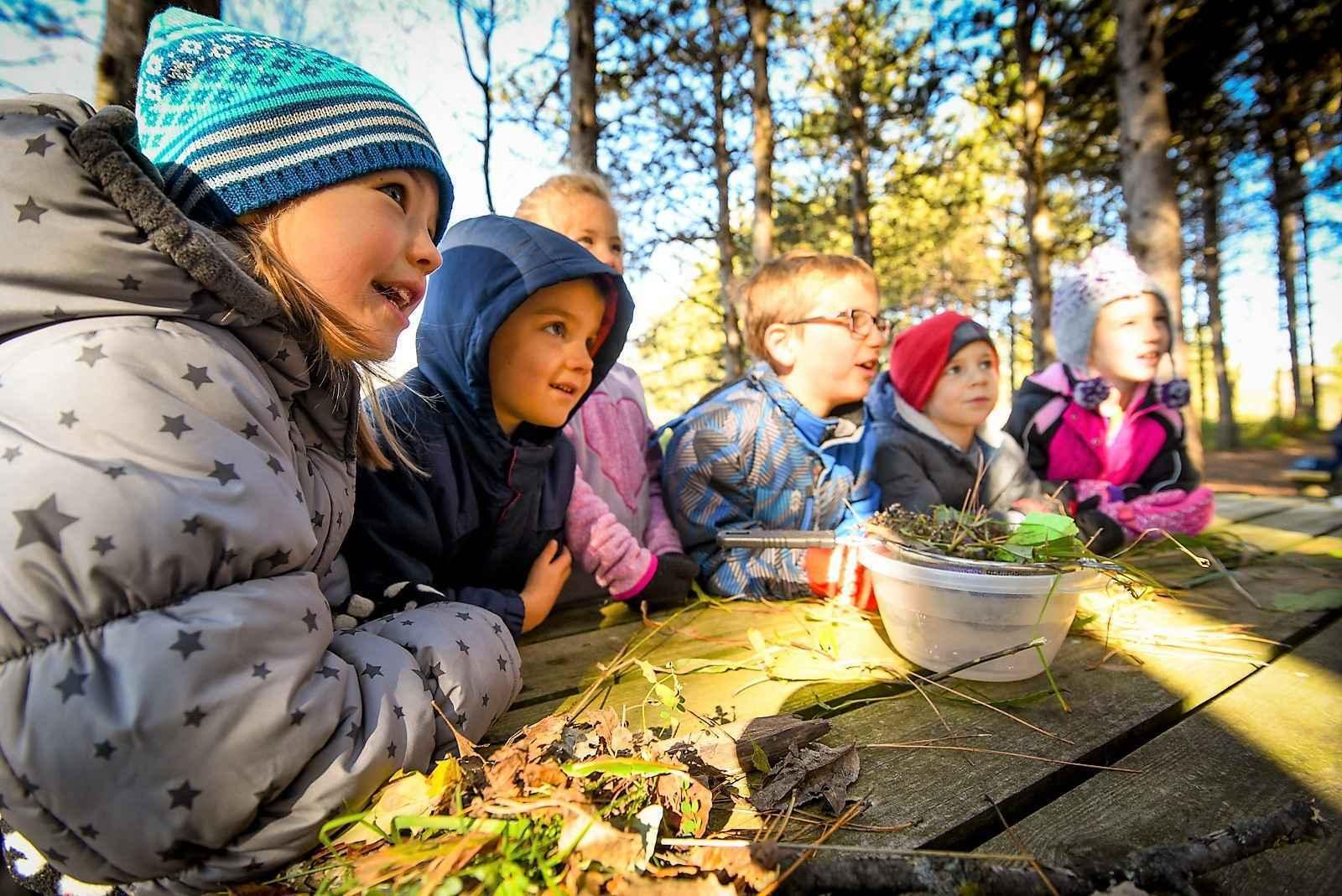 Home School Adventures image