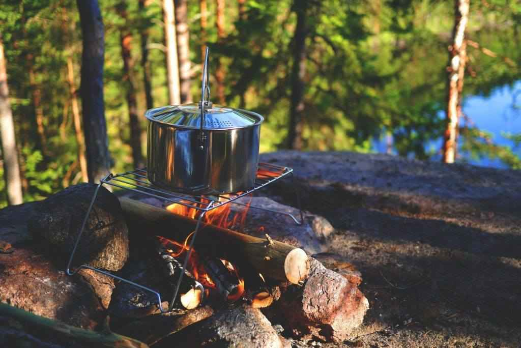 Wild Edibles & Outdoor Cooking image