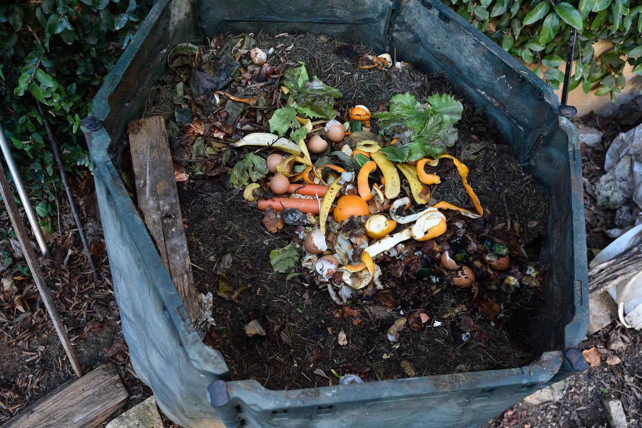Composting Workshop at UNCA image