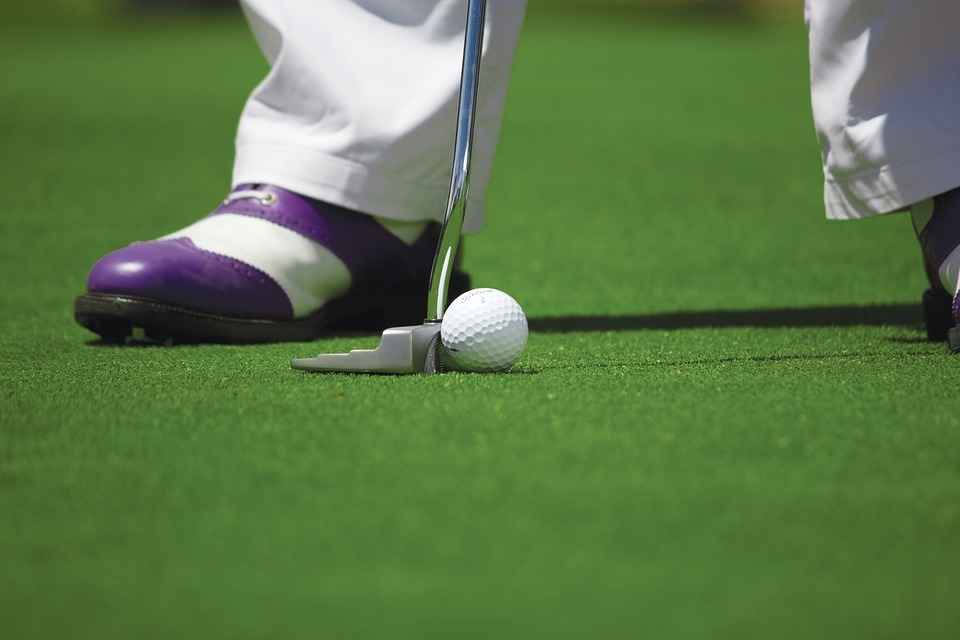 Toledo Food Bank Second Annual Golf Classic image