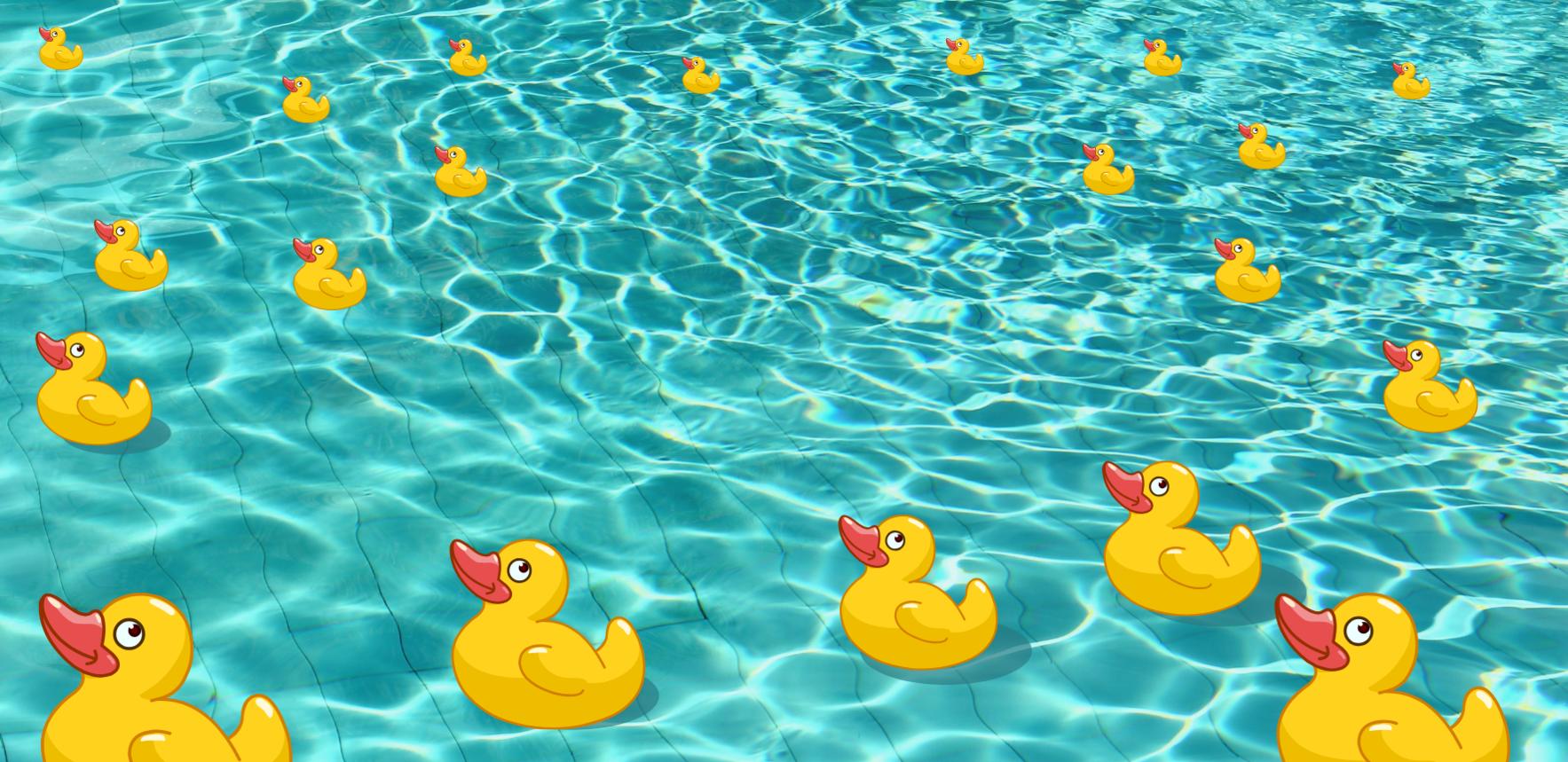 YWCA Splash for Cash Duck Drawing image