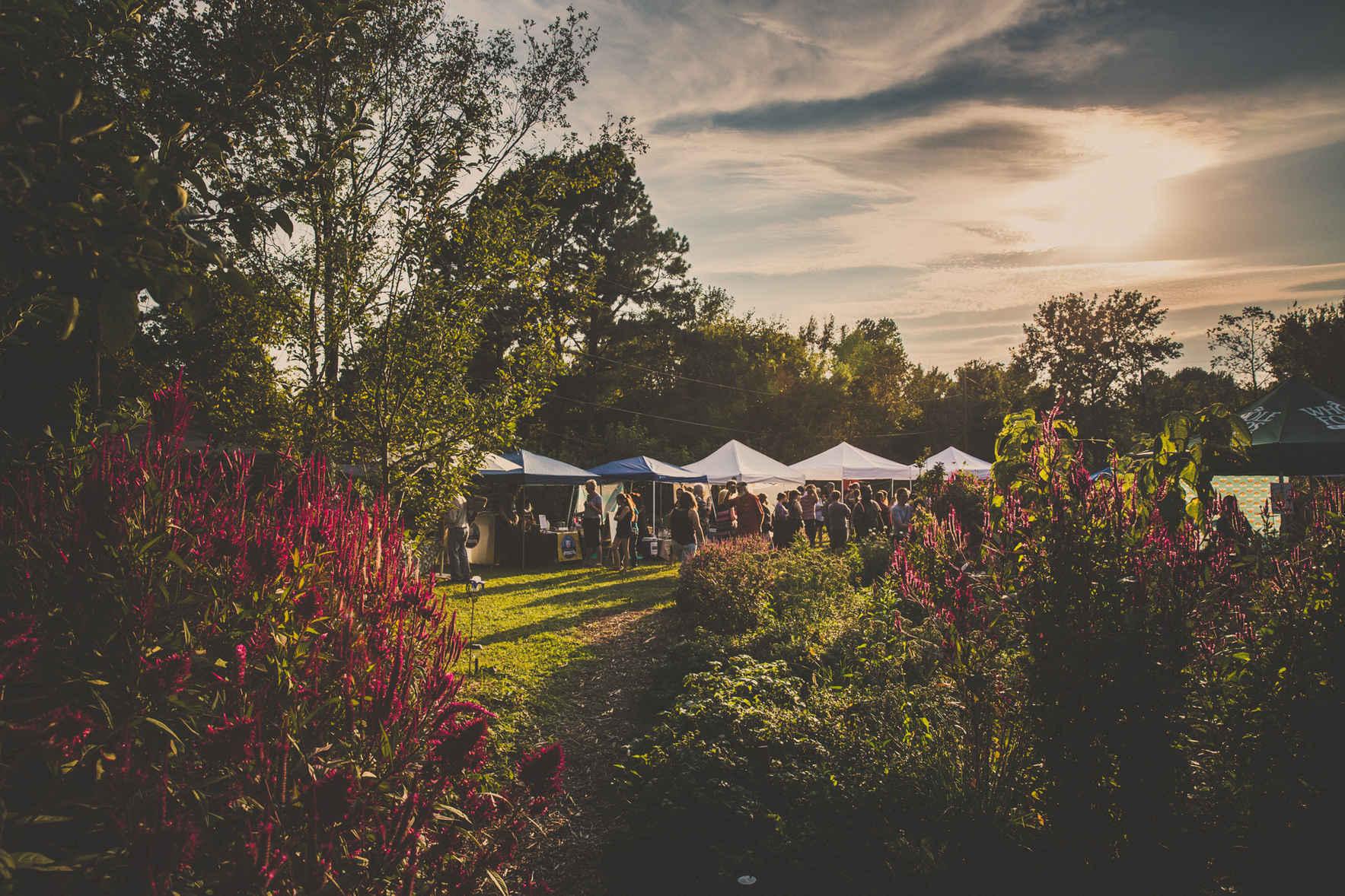 Tri Cycle Farms' 8th Annual Pesto Fest & Pesto Contest image