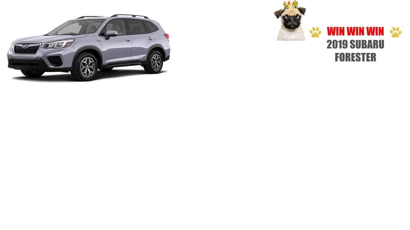 Raffle Ticket - 2019 Subaru Forester Premium Edition 2.0i H4  image