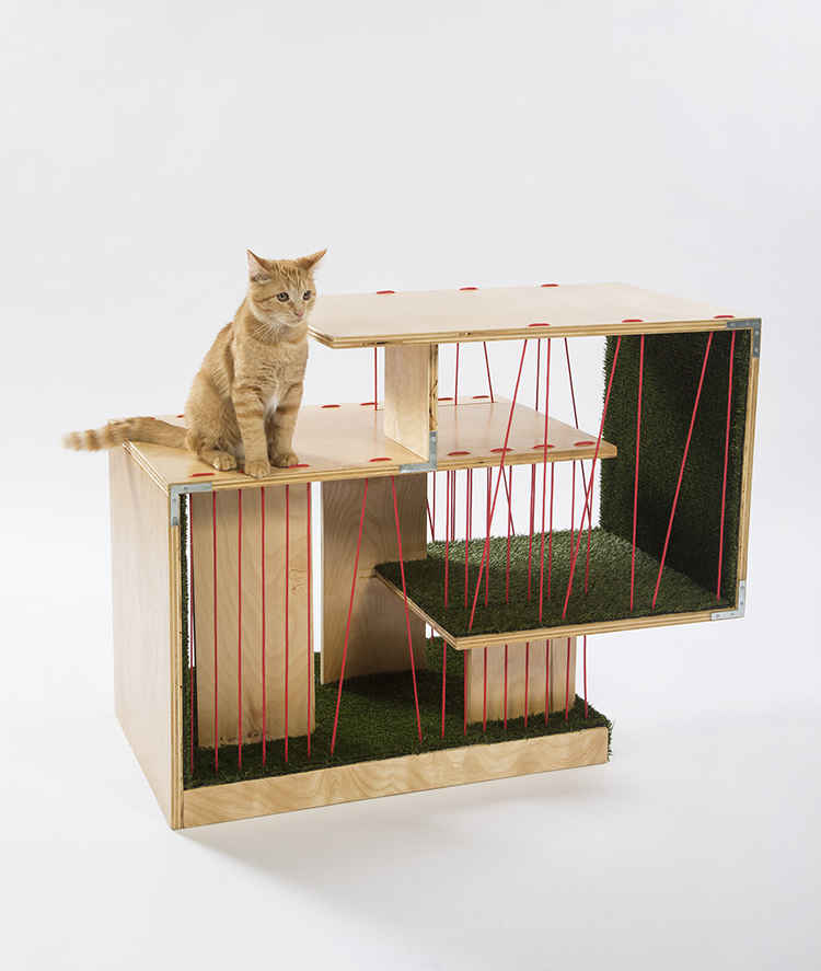 Giving Shelter - Architects for Animals image