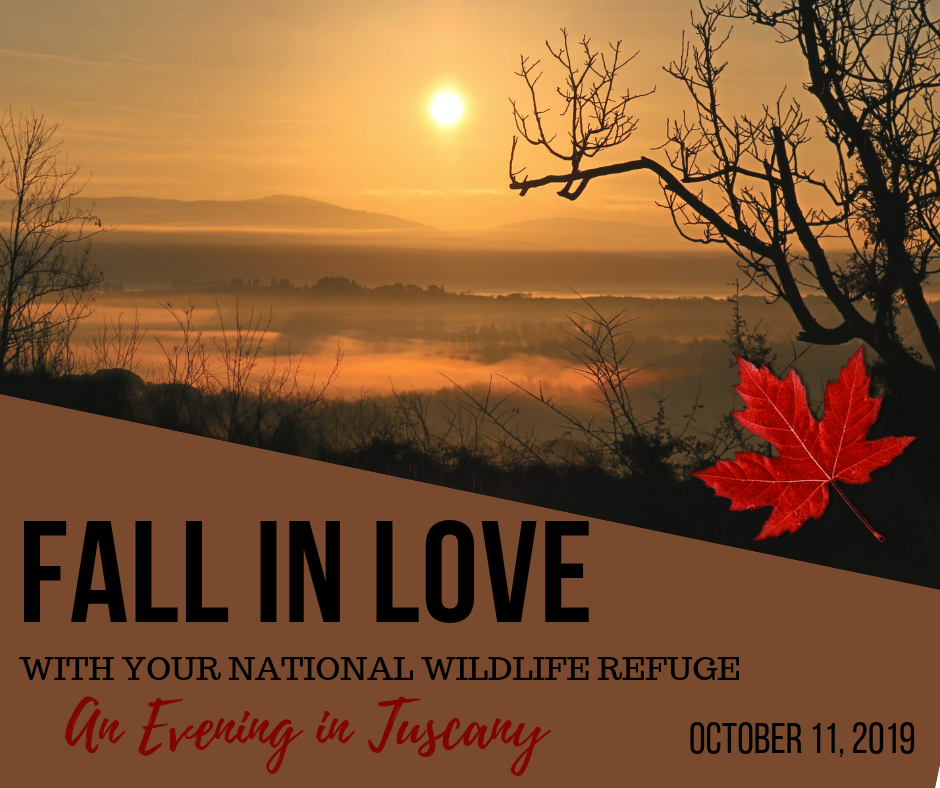 Fall in Love with Your Refuge Benefit image