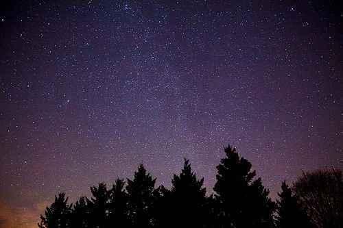 Night Hike  image