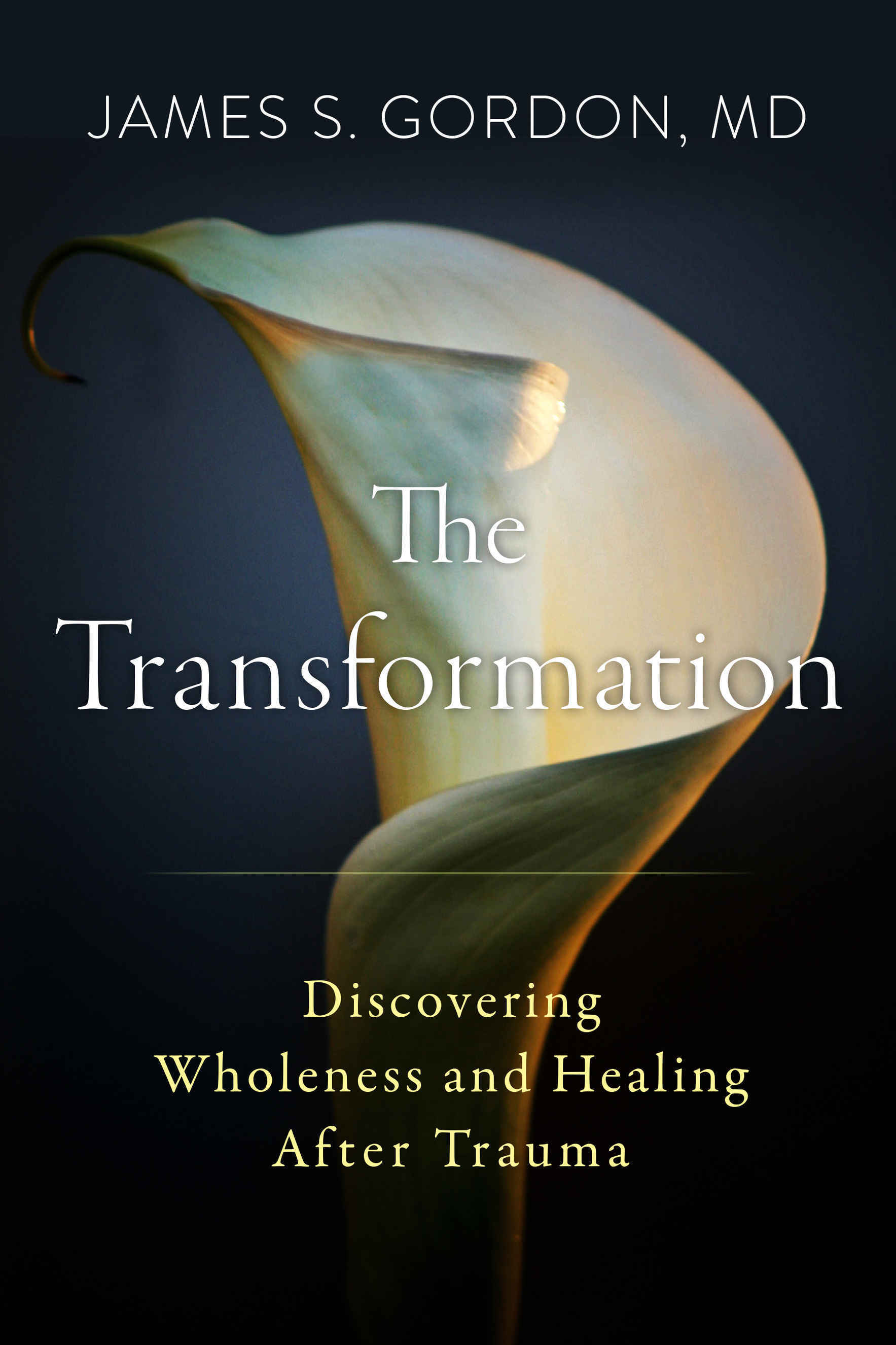 Book Spotlight: The Transformation with author James Gordon, M.D. image