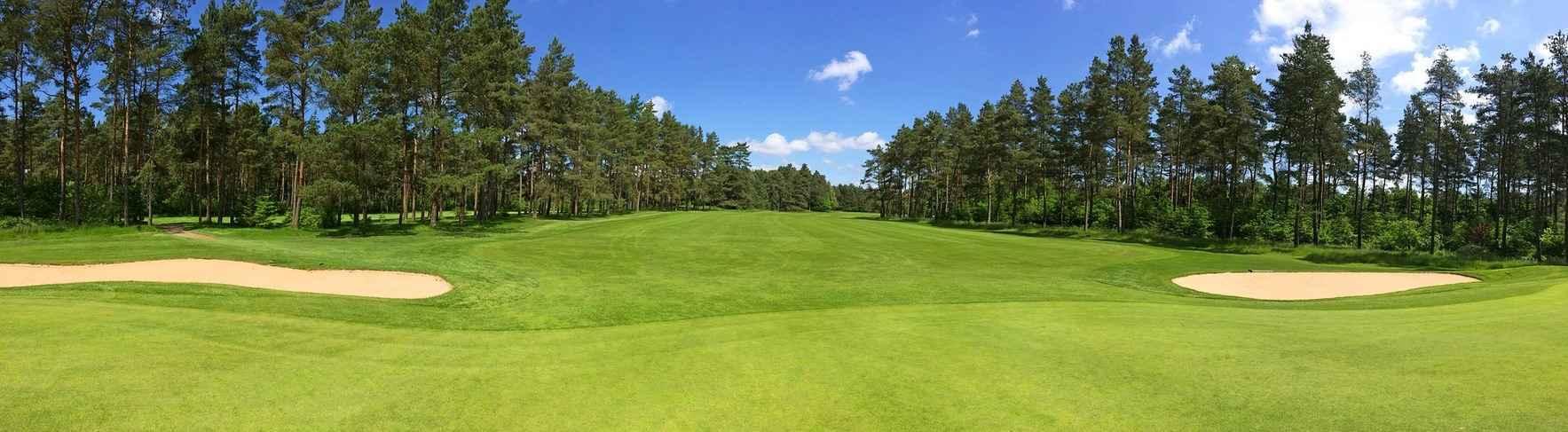 Straydog Golf Tournament image
