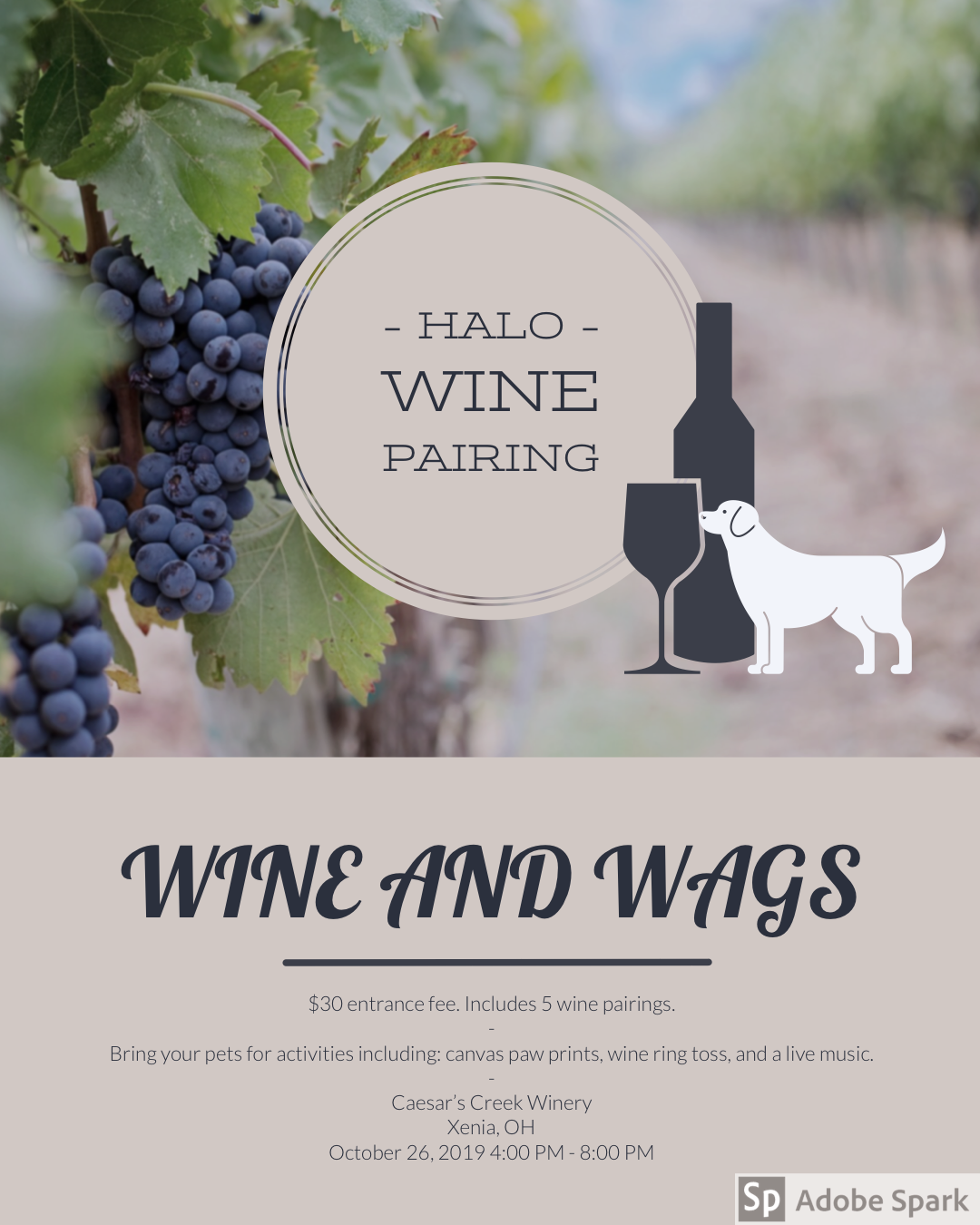 Wine and Wags image