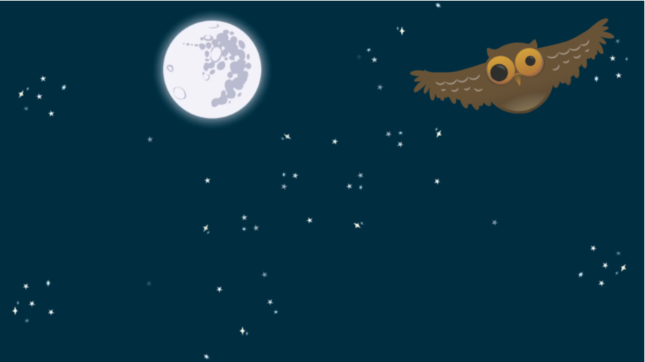 Friday Night Flights image
