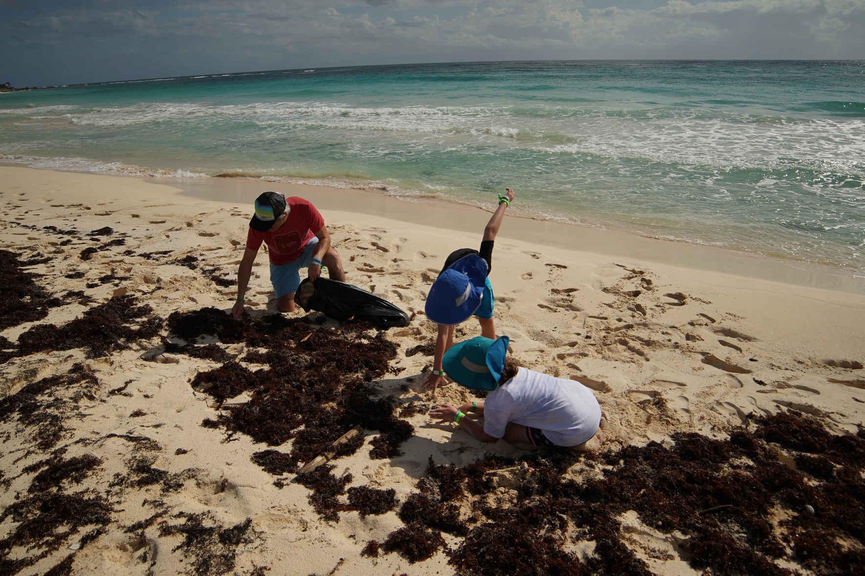 Panic En La Playa Nueve: Day of Service & Sustainable Experience image