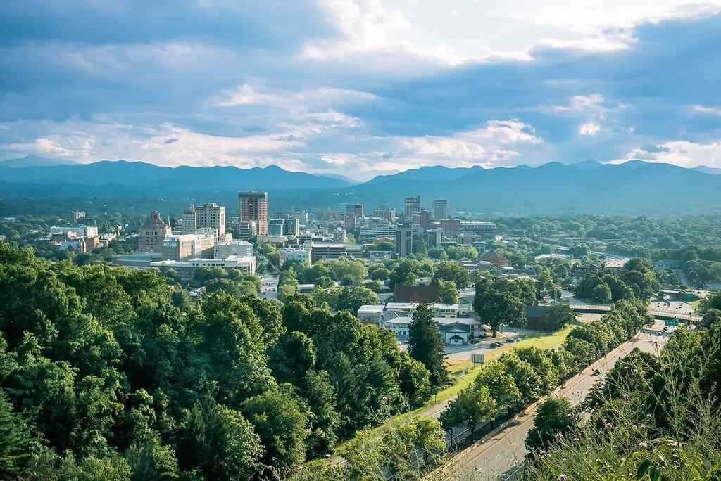 Climate Change and Asheville's Urban Forest image