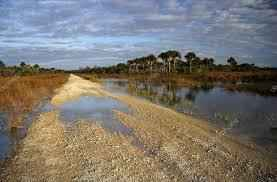 Picayune Strand Restoration Project: What Progress Have They Made image