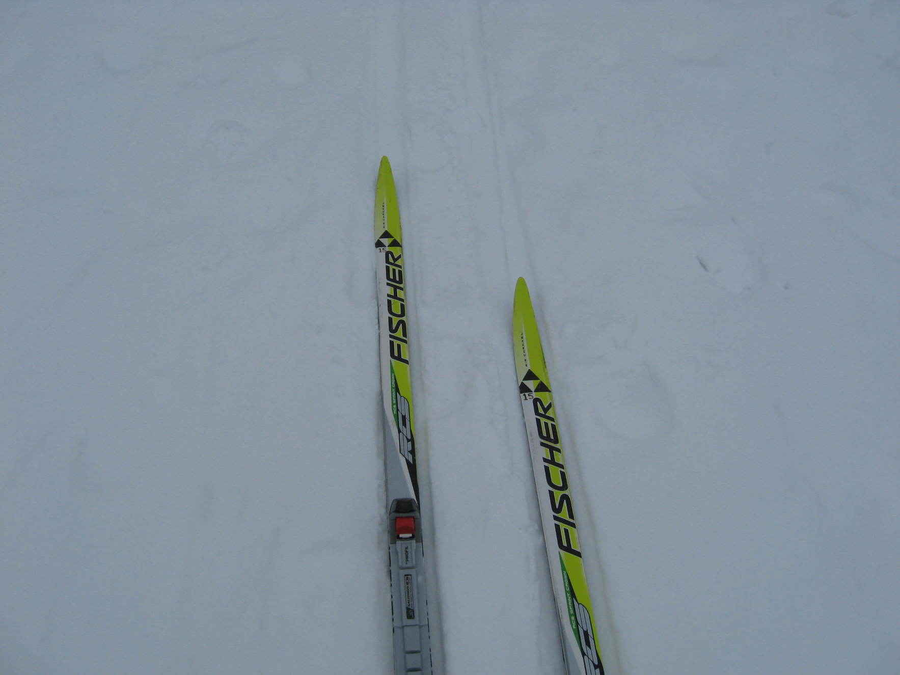 Kids Adventure Series: Cross Country Skiing  image
