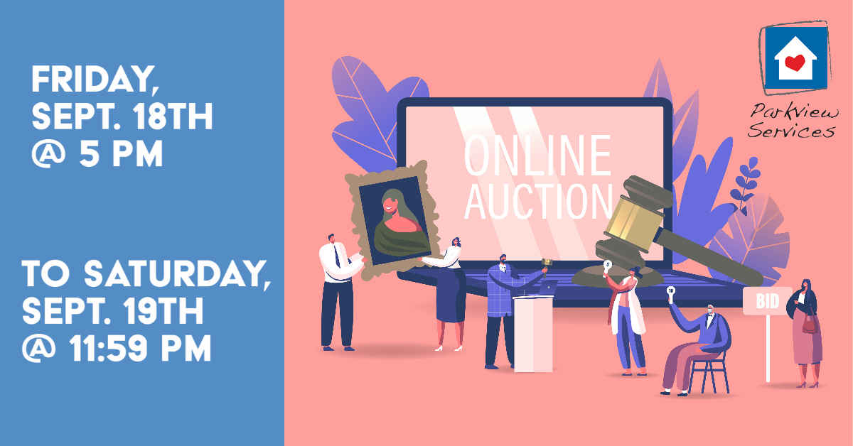Parkview Services 2020 Online Auction image