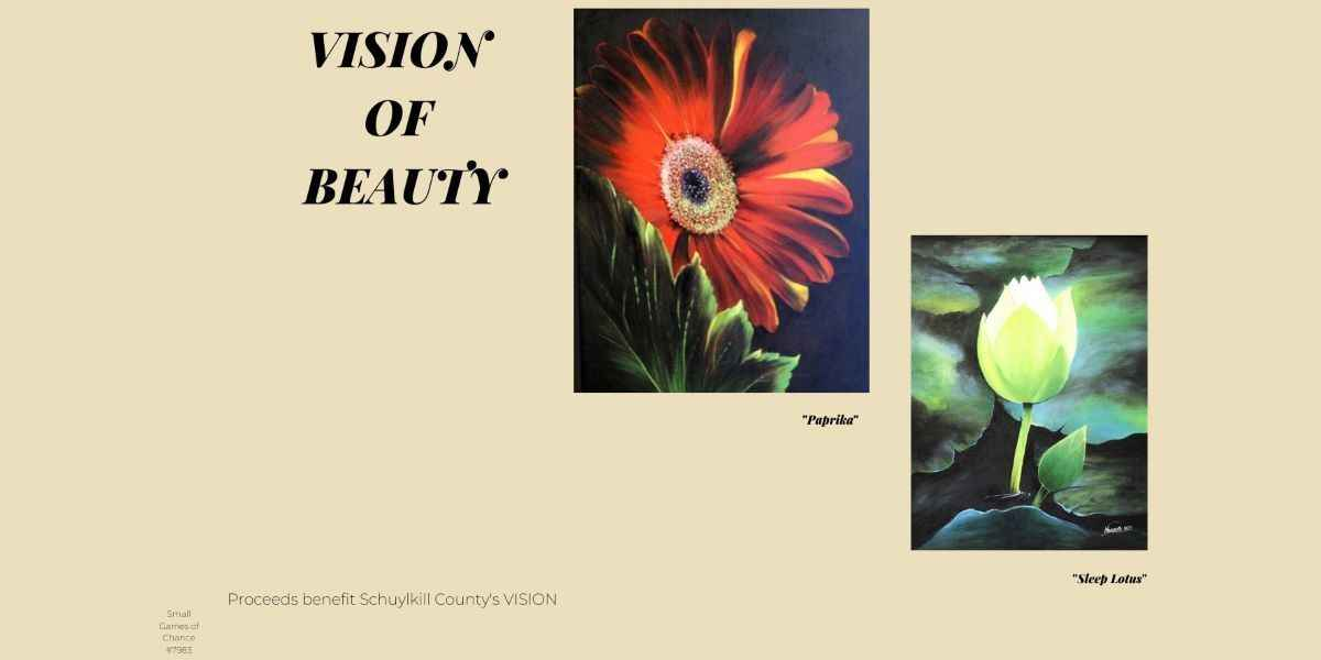 VISION of Beauty image