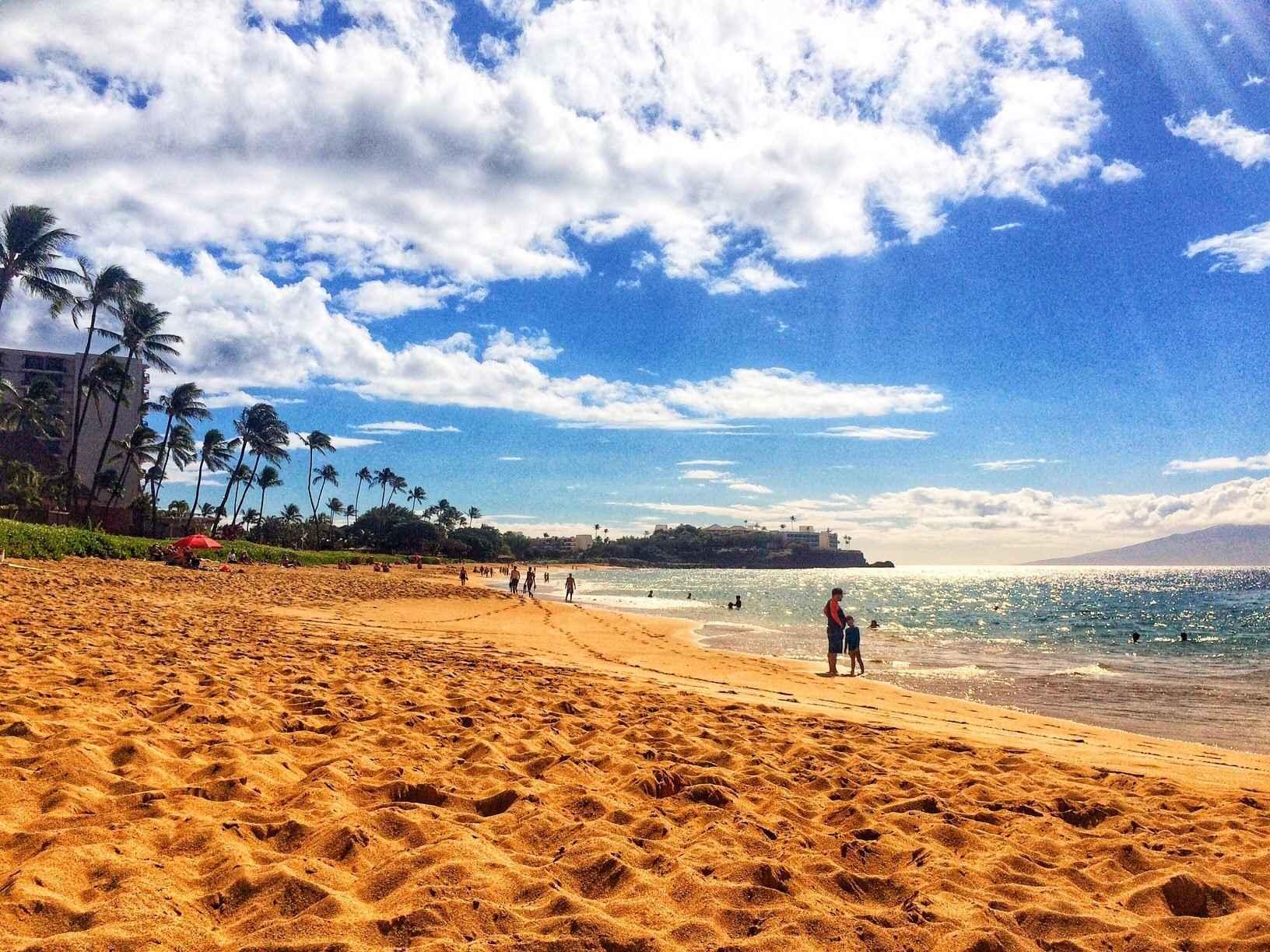 Hawaii Condo Raffle Spring 2020! image