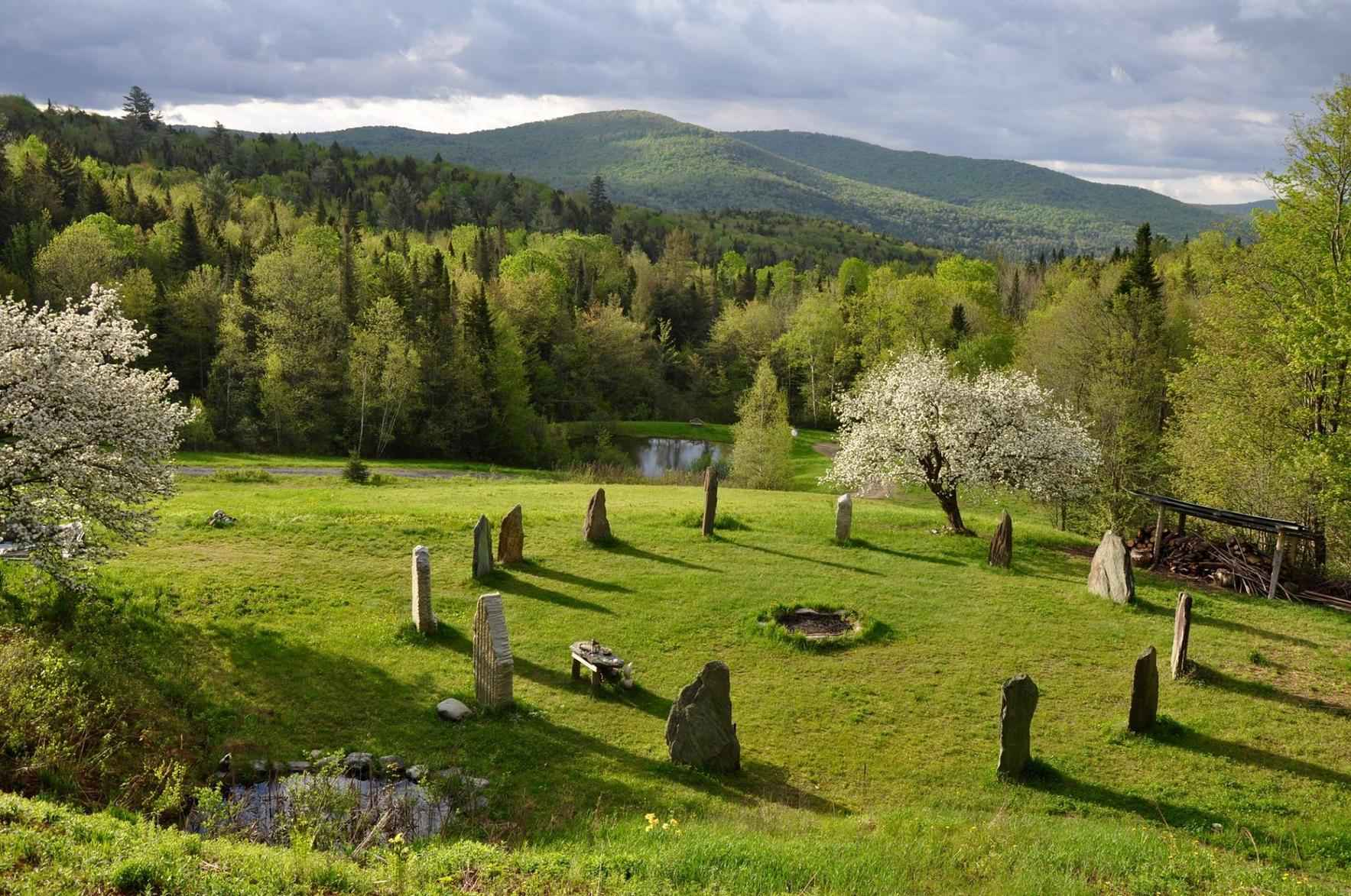 Druidry for Personal and Planetary Healing image
