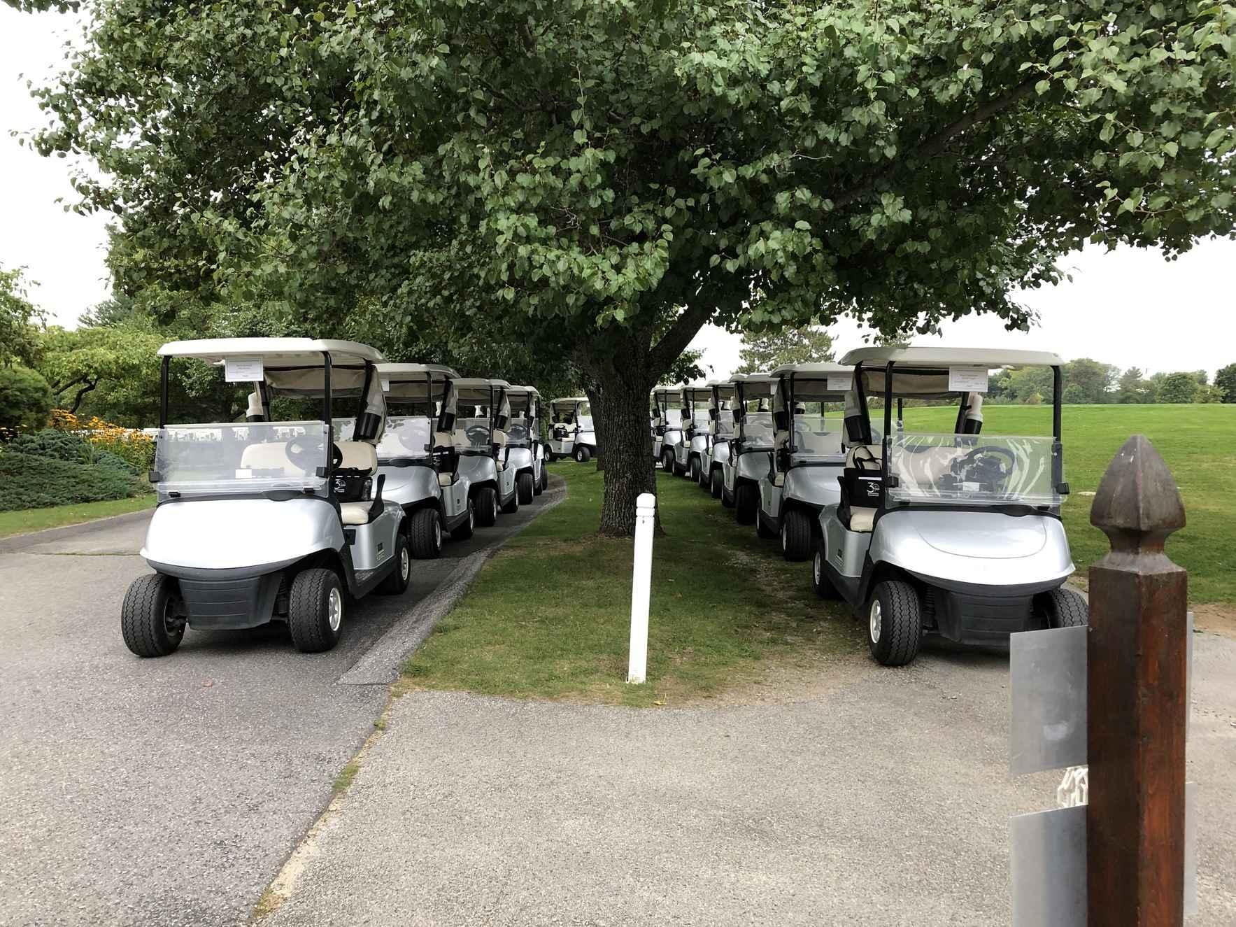 31st Annual Golf Challenge image